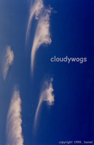 Cloudywogs